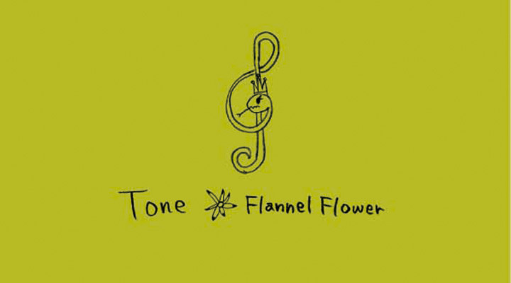 Flannel Flower – Tone